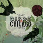 Birds of Chicago cover art