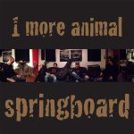 Springboard cover art