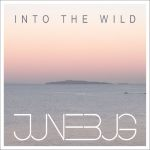 Into The Wild EP cover art