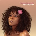 The Gumption cover art