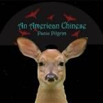Panic Pilgrim cover art