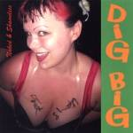 Dig Big cover art
