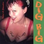 Dig Big cover art